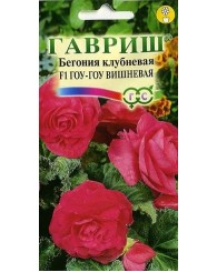 БЕГОНИЯ ГОУ-ГОУ ВИШНЕВАЯ (пробирка) 4шт/20