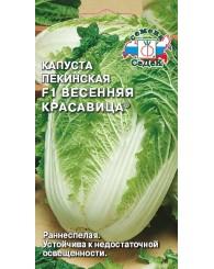 КАПУСТА ПЕКИНСКАЯ (С) ВЕСЕННЯЯ КРАСАВИЦА 0,3г/10