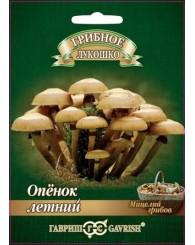 ГРИБ ОПЕНОК ЛЕТНИЙ (древесная палочка) 12шт/10