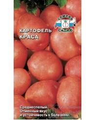 КАРТОФЕЛЬ (С) КРАСА 1г/10