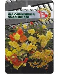 БЕГОНИЯ (Б) ИЛЛЮМИНЕЙШН ГОЛДЕН ПИК (ампель) 8шт/10
