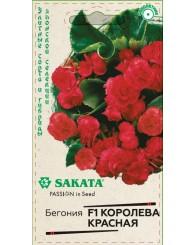 БЕГОНИЯ ВЕЧНОЦВЕТУЩАЯ КОРОЛЕВА (красная) 4шт/20
