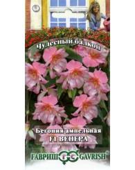 БЕГОНИЯ ВЕНЕРА (ампельная) F1 (пробирка) 4шт/20